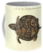 Common Box Tortoise, 1585 Coffee Mug