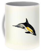 Common Dolphin Coffee Mug