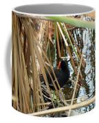 Common Gallinule Coffee Mug