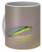 Common Green Lacewing - Chrysoperla Carnea Coffee Mug