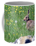 Common Hare Coffee Mug