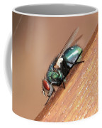 Common House Fly Coffee Mug