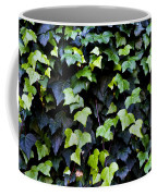 Common Ivy Coffee Mug