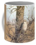 Common Mockingbird Coffee Mug