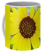 Common Sunflower In Northwest North Dakota Coffee Mug