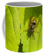 Common Wasp Coffee Mug