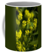 Common Wintercress Flowers Coffee Mug