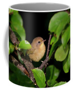 Common Yellowthroat Warbler Coffee Mug