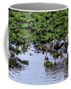 Community Pond Coffee Mug