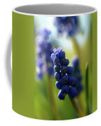 Compact Grape-hyacinth 2 Coffee Mug