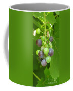 Concord Grapes On The Vine Coffee Mug