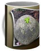 Concrete Toad Stool Coffee Mug
