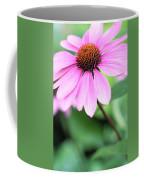 Cone Flower 3 Coffee Mug