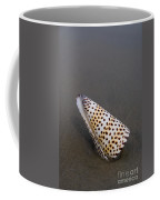 Cone Seashell On The Beach Coffee Mug