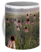 Coneflowers At Dawn Coffee Mug
