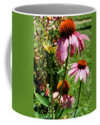 Coneflowers In Garden Coffee Mug