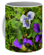 Confederate And Purple-blue Violets Coffee Mug