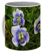 Confederate Violets Coffee Mug