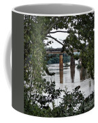 Congaree River Glimpse Coffee Mug