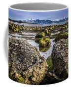 Conglomerate Boulders, Green Point, Nl Coffee Mug