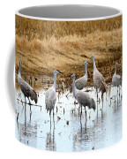 Congregating Sandhill Cranes Coffee Mug