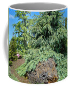 Conifer Tree Art Prints Pine Trees Botanical Nature Baslee Troutman Coffee Mug