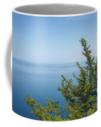 Coniferous Trees On Blue Sky Background Coffee Mug by Sergey Taran