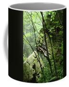 Conkle's Hollow Stone Arch Coffee Mug