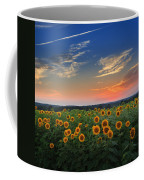 Connecticut Sunflowers In The Evening Coffee Mug
