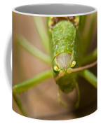 Consternation Coffee Mug