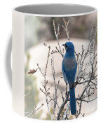 Contemplating The Winter To Come Coffee Mug