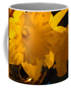 Contemporary Flower Artwork 10 Daffodil Flowers Evening Glow Coffee Mug