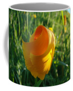Contemporary Orange Poppy Flower Unfolding In Sunlight 10 Baslee Troutman Coffee Mug