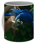 Contorted Parrots Coffee Mug