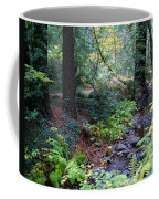 Cool Creek On Mt Tamalpais Coffee Mug