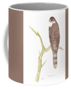 Cooper's Hawk Coffee Mug