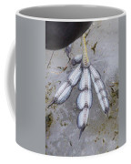 Coot Foot Coffee Mug