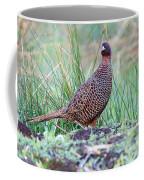 Copper Pheasant Coffee Mug