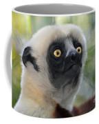 Coquerel's Sifaka Lemur Coffee Mug