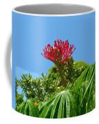 Coral Bush Jatropha Multifida With Flower And Fruit Coffee Mug