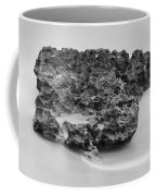 Coral Cove Park 0532 Coffee Mug
