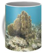 Coral Tree Coffee Mug