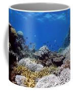 Corals Garden Coffee Mug