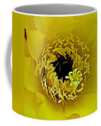 Core Of A Yellow Cactus Flower At Pilgrim Place In Claremont-california Coffee Mug