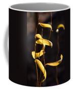 Corkscrew Willow Coffee Mug
