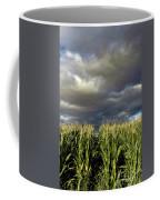 Corn Field Beform Storm Coffee Mug