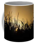 Corn Field Sunrise Coffee Mug