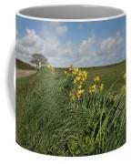 Cornish Daffodil Hedge Coffee Mug
