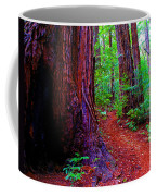 Cosmic Redwood Trail On Mt Tamalpais Coffee Mug