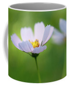 Cosmos In A Field Coffee Mug